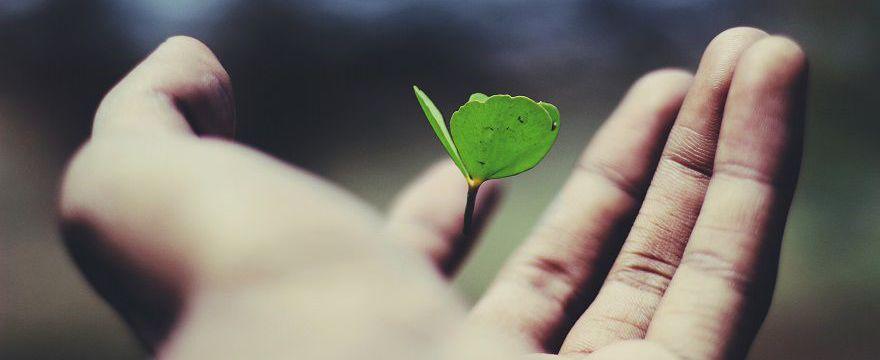 SZKOLENIE: Czy da się przedłużyć życie? Długowieczność jest możliwa!